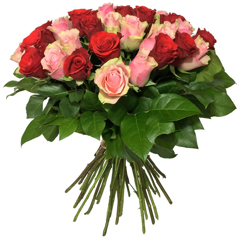 Bouquet de Roses Rouge & Rose