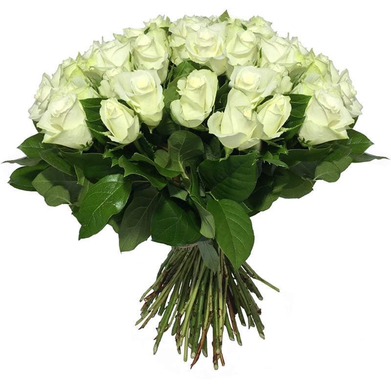 Bouquet de Roses Blanche - Place O Fleurs